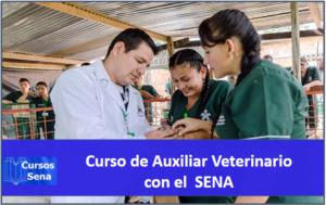 Fórmate como auxiliar veterinario